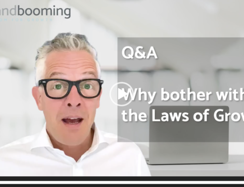 Q&A – Why bother with the Laws of Growth?
